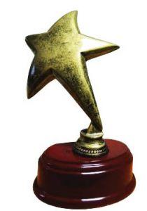 Статуэтка Звезда (15 см)