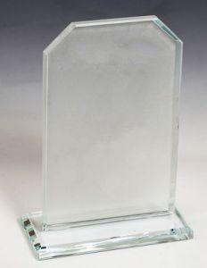 Награда из стекла  (17. см, нанесение  включено в стоимость)