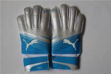 Перчатки вратарские Puma Evopower Grip 2.3 Blue