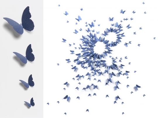 Бабочки синие