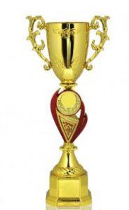 Кубок золотой (30 см)