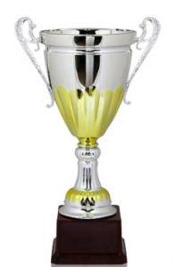 Кубок серебро-золото (29 см)