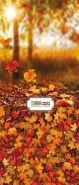 """Фон """"Fall"""" 3x1,5 (3,5x1,5 м)"""
