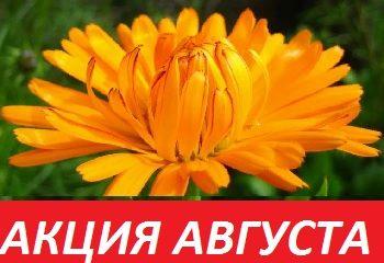 АКЦИЯ АВГУСТА