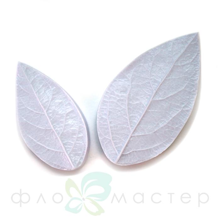 Набор молдов листья снежноягодника