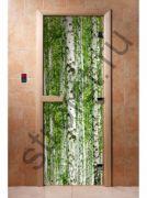 Дверь с фотопечатью, арт.А084, 190х70, 8 мм, 3 петли, коробка ольха.