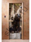 Дверь с фотопечатью, арт.А061, 190х70, 8 мм, 3 петли, коробка ольха.
