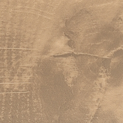 ЛДСП Q3309 RO Дуб Гладстоун песочный