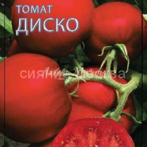 Томат Диско F1. Серия Томаты- Фрукты