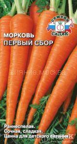Морковь Первый сбор