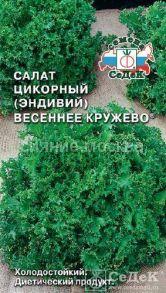 Салат цикорный эндивий Весеннее Кружево