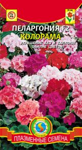 Пеларгония F2 КОЛОРАМА Смесь Pelargonium zonale F2 Colorama mixed