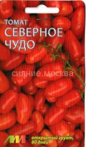 томат северное чудо