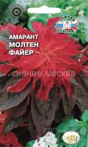 АМАРАНТ МОЛТЕН ФАЙЕР