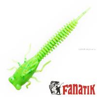 Мягкие приманки Fanatik X-Larva 4'' 100 мм / упаковка 5 шт / цвет: 020