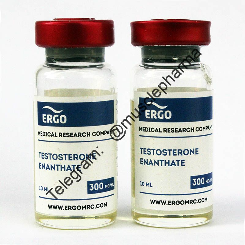 TESTOSTERONE ENANTHATE (ERGO). 1 флакон * 10 мл.