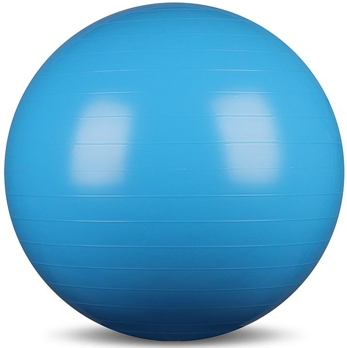 Мяч гимнастический (фитбол) INDIGO IN001 65см