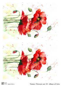 Flowers set 10
