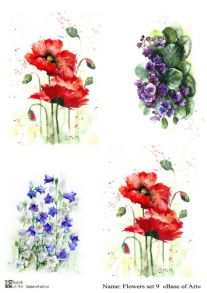 Flowers set 9