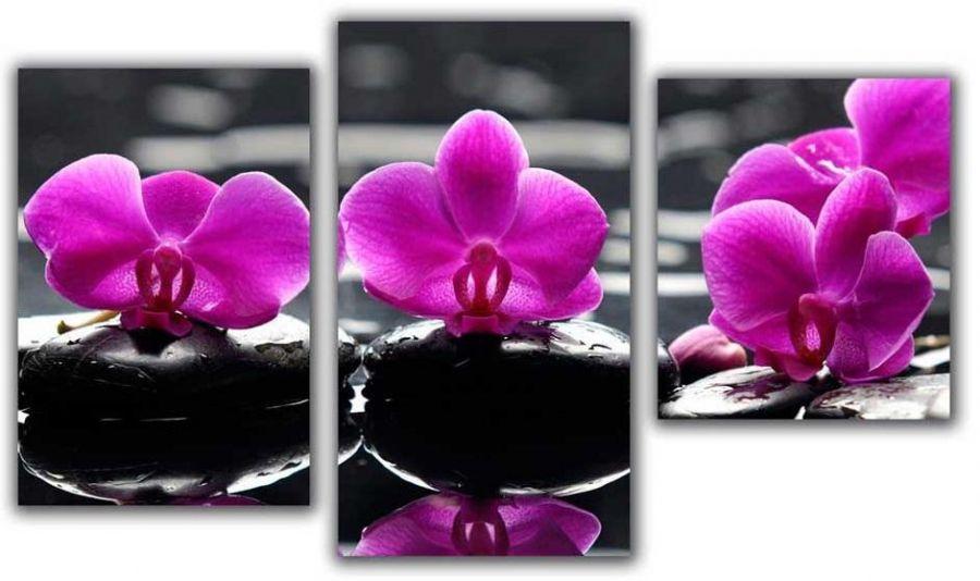 Мини модульная картина Цветы на камнях Toplight 55х94см TL-MM1038