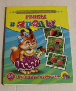 ! грибы и ягоды 16карт, ячейка: 14