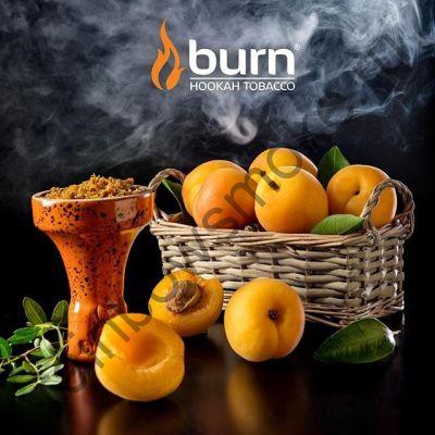 Burn 100 гр - Juicy Apricot (Сочный абрикос)