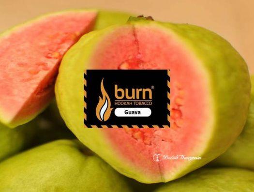 Burn - Guava  (вкус тропического фрукта)