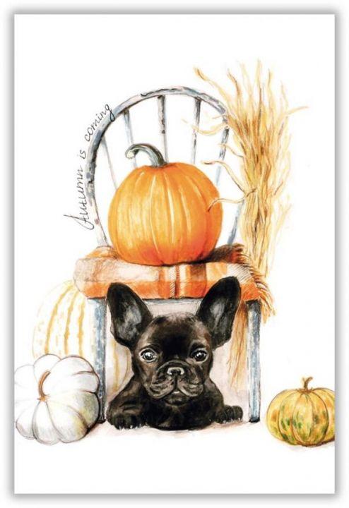 Собака и тыквы
