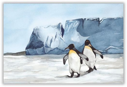 Антарктические приятели