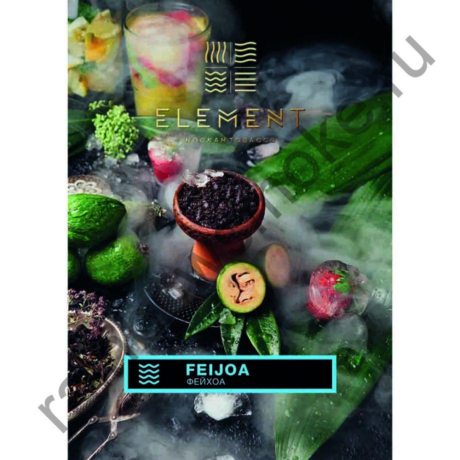 Element Вода 40 гр - Фейхоа (Feijoa)