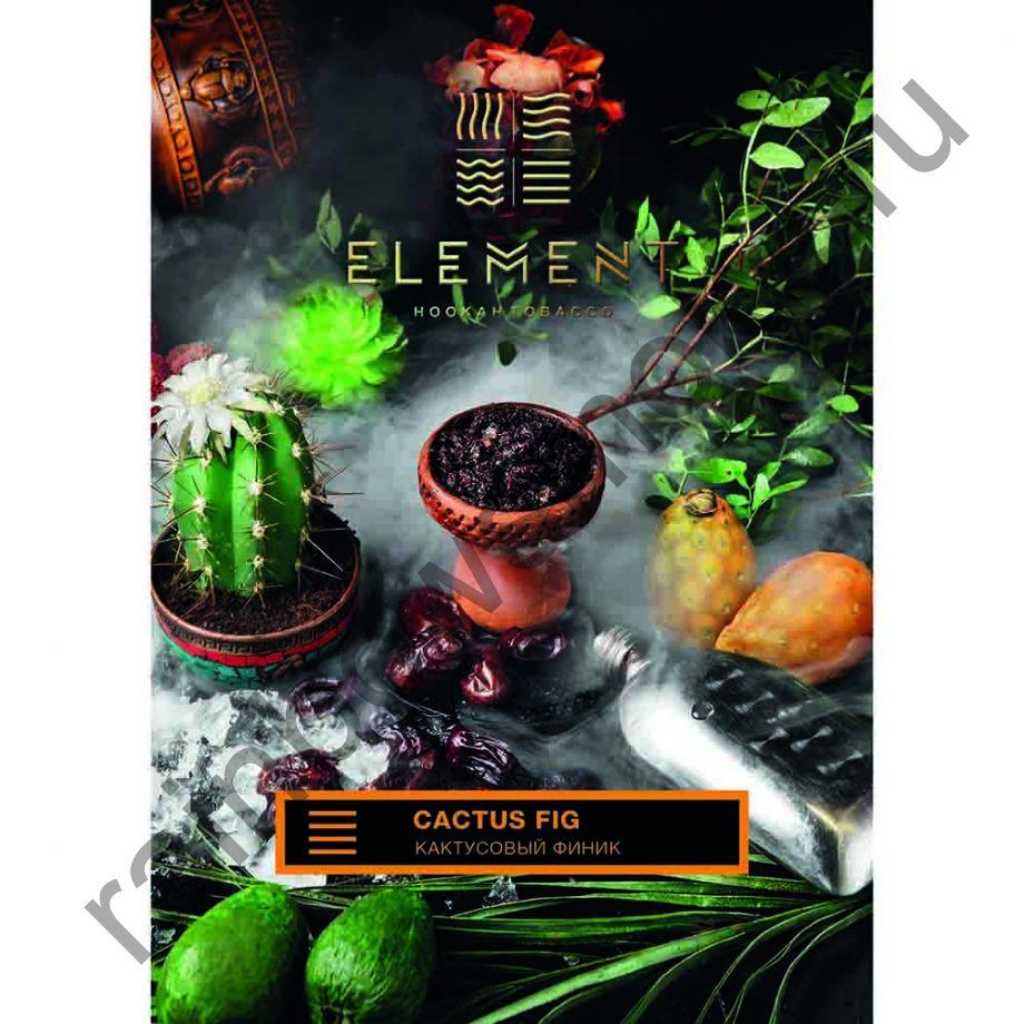 Element Земля 40 гр - Кактусовый Финик (Cactus Fig)