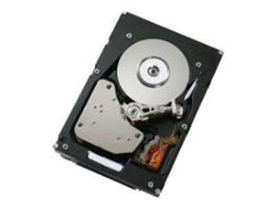 Жесткий диск IBM 600Gb 10K SFF, 49Y2003