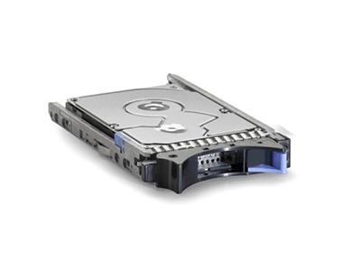 Жесткий диск IBM 2Tb 7200K 6Gb SAS NL 3,5 49Y1871