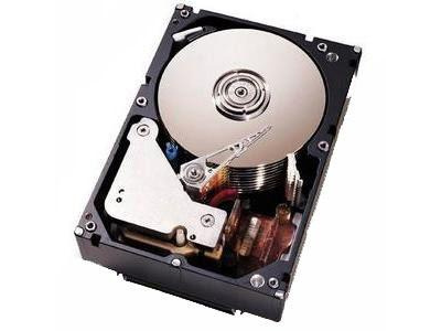 Жесткий диск IBM DS4200 500GB SATA EV-DDM DISC, 42D0389