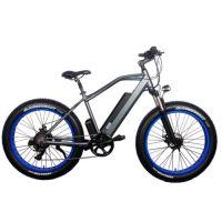 Электровелосипед El-sport TDE-08