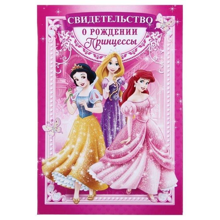 """Папка для свидетельства о рождении А5 """"Принцессы"""" с файлом для полиса"""