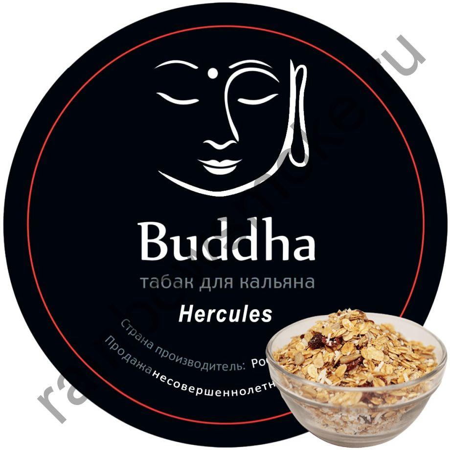 Buddha 100 гр - Hercules (Овсянка)