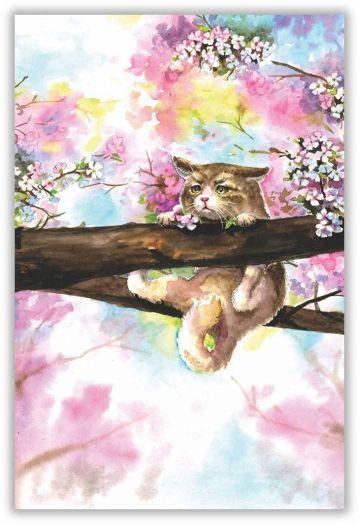 Майский кот