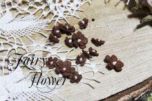 """Цветы """"Пяти цветик коричневый лесной"""""""