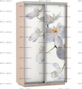 Шкаф-купе Экспресс Фото дуо, Цветы белые