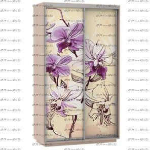Шкаф-купе Экспресс Фото дуо, Цветы