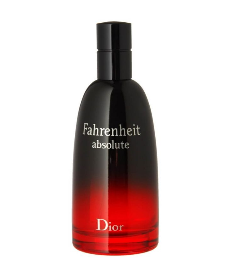 Christian Dior Туалетная вода Fahrenheit Absolute, 100 ml (Man)