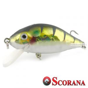Воблер Scorana Sailor Shad 60F 60 мм / 6 гр / Заглубление: 0 - 1 м / цвет: ZND