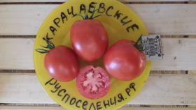 Томат Карачаевские
