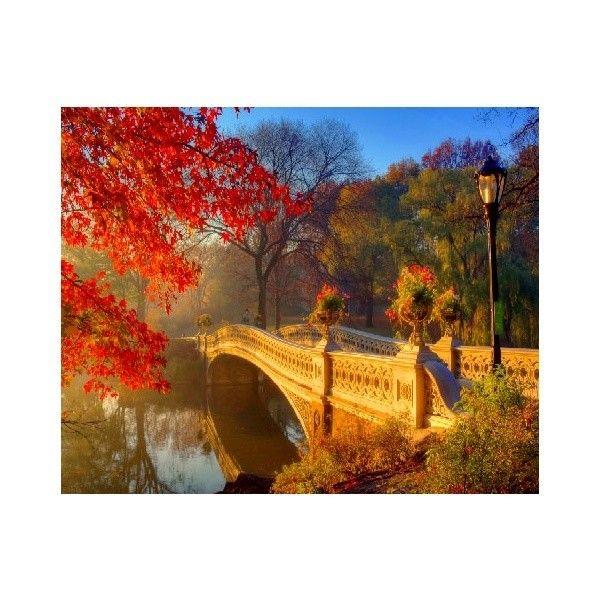 Картина по номерам Осенний парк 40*50см