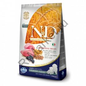 N&D Low Grain Dog Lamb & Blueberry Puppy Medium & Maxi - корм для щенков крупных и средних пород с ягненком и черникой