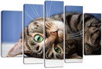 Модульная картина Милый кот