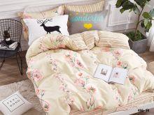 Комплект постельного белья Сатин SK  2-спальный  Арт.20/496-SK