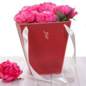 Пакет трапеция «Красный», 23 × 23 × 10 см