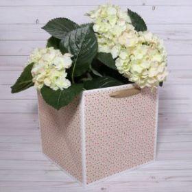 """Пакет для цветов """"Звёзды"""", розовый, 22 х 22 х 2 см"""